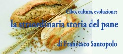 Cibo, cultura, evoluzione: la straordinaria storia del pane