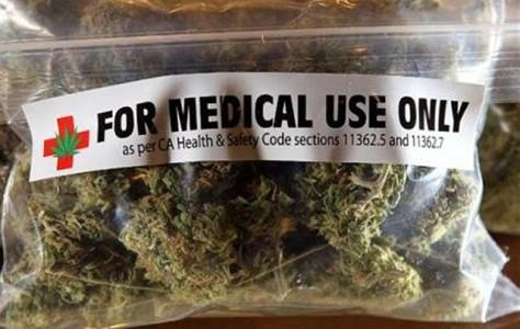 La cannabis e il diritto alla salute  Curare sì, giocare con le parole no